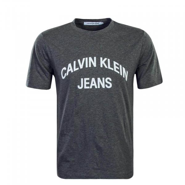 bf116b3b775246 graues Herren T-Shirt von Calvin Klein online kaufen