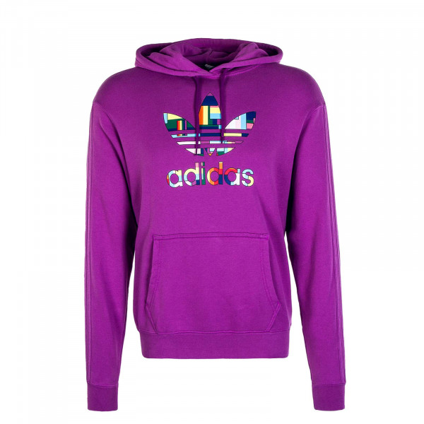 Herren Hoody Flag Fill Purple Multicolour
