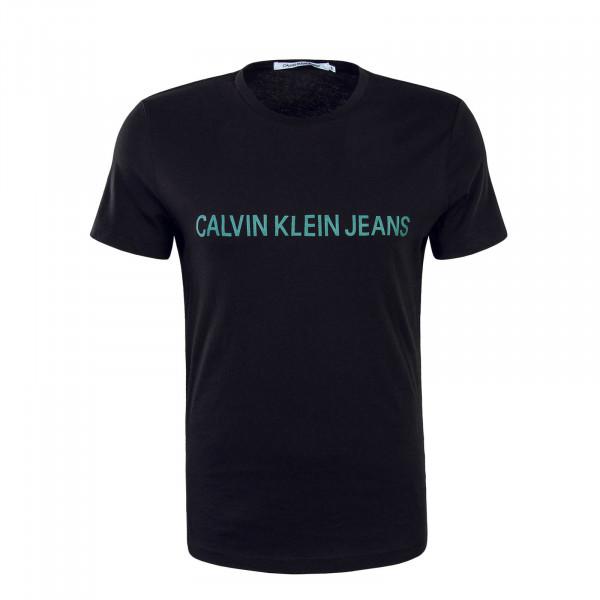 Herren T-Shirt Institutional Logo Black Green