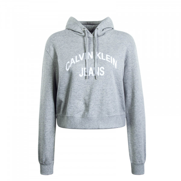 Damen Hoody Instit Grey White
