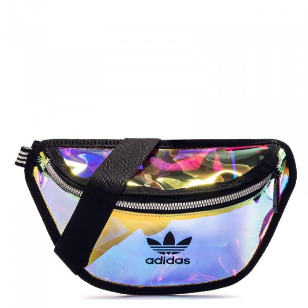 Hip Bag Transparent Clear